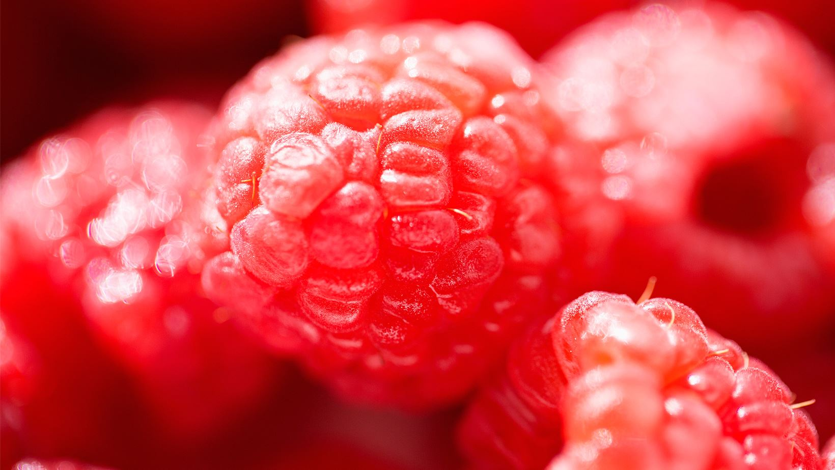 Beauty Booster rote Beeren