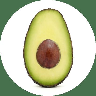 Avocadoextrakt